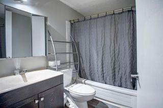 Photo 16: 180 Maitland Place NE in Calgary: Marlborough Park Detached for sale : MLS®# A1048392