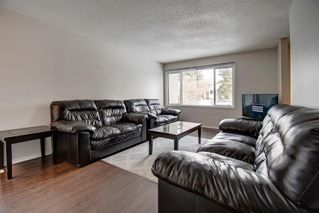 Photo 10: 180 Maitland Place NE in Calgary: Marlborough Park Detached for sale : MLS®# A1048392
