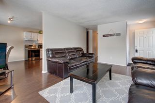 Photo 12: 180 Maitland Place NE in Calgary: Marlborough Park Detached for sale : MLS®# A1048392
