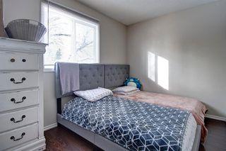 Photo 13: 180 Maitland Place NE in Calgary: Marlborough Park Detached for sale : MLS®# A1048392