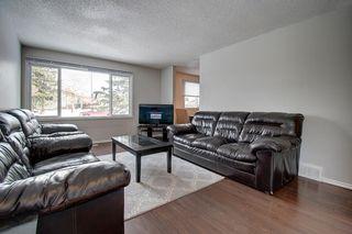Photo 9: 180 Maitland Place NE in Calgary: Marlborough Park Detached for sale : MLS®# A1048392