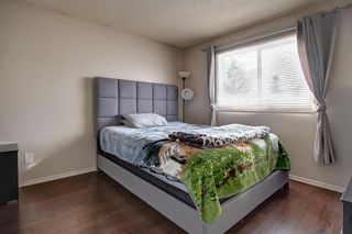 Photo 14: 180 Maitland Place NE in Calgary: Marlborough Park Detached for sale : MLS®# A1048392