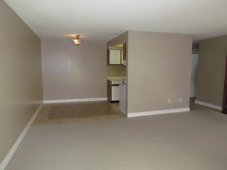 Photo 4: #308 2684 MCCALLUM RD in ABBOTSFORD: Central Abbotsford Condo for rent (Abbotsford)