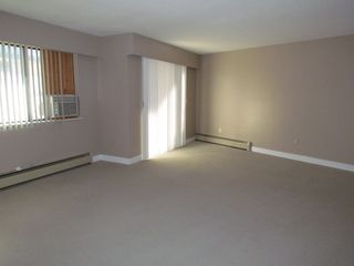 Photo 3: #308 2684 MCCALLUM RD in ABBOTSFORD: Central Abbotsford Condo for rent (Abbotsford)