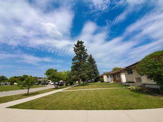 Photo 3: 781 Polson Avenue in Winnipeg: Single Family Detached for sale (4C)  : MLS®# 1923672