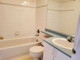 Photo 12: 59 12331 MCNEELY Drive in Richmond: East Cambie Townhouse for sale : MLS®# R2412756