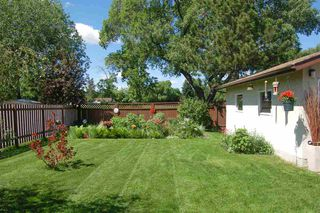 Photo 31: 15 CIRCLEWOOD Drive: Sherwood Park House for sale : MLS®# E4203884
