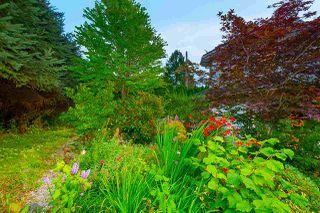 Photo 28: 10403 127 Street in Surrey: Cedar Hills House for sale (North Surrey)  : MLS®# R2483764