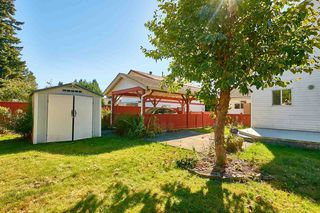 Photo 3: 20365 116 Avenue in Maple Ridge: Southwest Maple Ridge House for sale : MLS®# R2516825