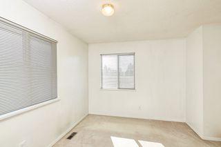 Photo 19: 20365 116 Avenue in Maple Ridge: Southwest Maple Ridge House for sale : MLS®# R2516825