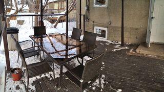 Photo 17: 11938 64 Street NW: Edmonton House for sale : MLS®# E3359660