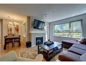 Photo 17: #118-700 Klahanie Dr. in Port Moody: Port Moody Centre Condo for sale : MLS®# V1125177