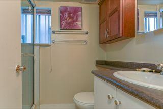 Photo 14: 3658 TURNER STREET in Vancouver: Renfrew VE House for sale (Vancouver East)  : MLS®# R2047927