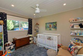 Photo 20: 4764 LAUREL Avenue in Sechelt: Sechelt District House for sale (Sunshine Coast)  : MLS®# R2503569
