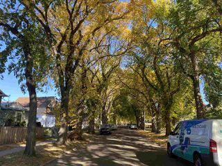 Photo 23: 11909 91 Street in Edmonton: Zone 05 House for sale : MLS®# E4216230