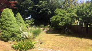 Photo 17: 16715 78 Avenue in Surrey: Fleetwood Tynehead House for sale : MLS®# R2511133