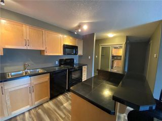 Photo 10: 311 355 5 Avenue NE in Calgary: Crescent Heights Apartment for sale : MLS®# A1050975