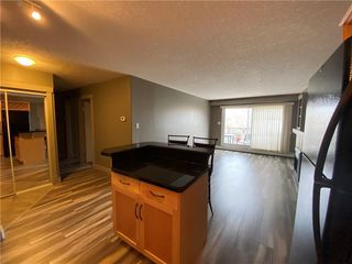 Photo 9: 311 355 5 Avenue NE in Calgary: Crescent Heights Apartment for sale : MLS®# A1050975