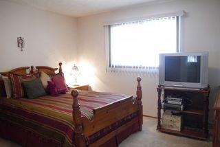 Photo 4: 252 Rochester Avenue in Winnipeg: Fort Garry / Whyte Ridge / St Norbert Residential for sale (South Winnipeg)  : MLS®# 1323439