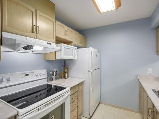 Photo 5: 103 2435 WELCHER AVENUE in Port Coquitlam: Central Pt Coquitlam Condo for sale : MLS®# R2150464