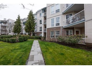 Photo 19: 104-20200 54A in Langley: Condo for sale : MLS®# R2147829