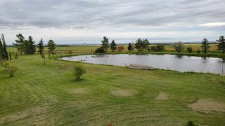 Photo 7: 55110 RGE RD 230: Rural Sturgeon County House for sale : MLS®# E4191963