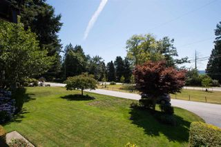 Photo 10: 13709 56A Avenue in Surrey: Panorama Ridge House for sale : MLS®# R2480678