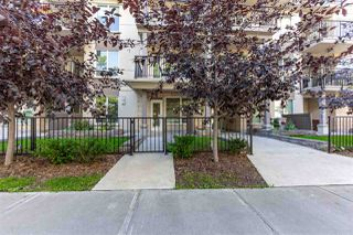 Photo 23: 101 9907 91 Avenue in Edmonton: Zone 15 Condo for sale : MLS®# E4212743