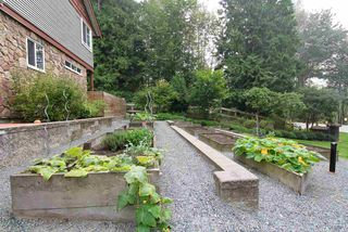 """Photo 35: 29 23651 132 Avenue in Maple Ridge: Silver Valley Townhouse for sale in """"MYRON'S MUSE"""" : MLS®# R2500147"""