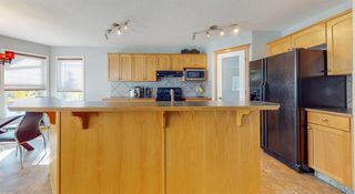 Photo 24: 4 Brightondale Parade SE in Calgary: New Brighton Detached for sale : MLS®# A1039084
