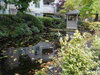 "Photo 29: 318 7171 121 Street in Surrey: West Newton Condo for sale in ""Highlands"" : MLS®# R2505061"