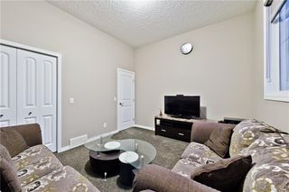 Photo 20: 142 SKYVIEW POINT CR NE in Calgary: Skyview Ranch House for sale : MLS®# C4226415
