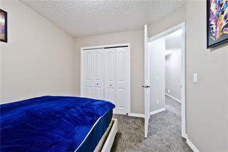 Photo 26: 142 SKYVIEW POINT CR NE in Calgary: Skyview Ranch House for sale : MLS®# C4226415