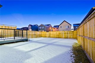 Photo 28: 142 SKYVIEW POINT CR NE in Calgary: Skyview Ranch House for sale : MLS®# C4226415