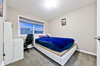 Photo 12: 142 SKYVIEW POINT CR NE in Calgary: Skyview Ranch House for sale : MLS®# C4226415