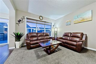Photo 22: 142 SKYVIEW POINT CR NE in Calgary: Skyview Ranch House for sale : MLS®# C4226415