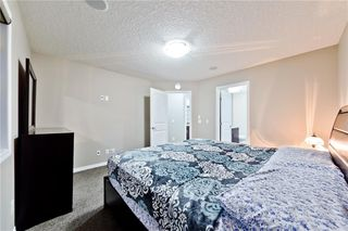 Photo 27: 142 SKYVIEW POINT CR NE in Calgary: Skyview Ranch House for sale : MLS®# C4226415