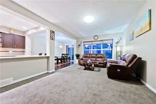 Photo 21: 142 SKYVIEW POINT CR NE in Calgary: Skyview Ranch House for sale : MLS®# C4226415