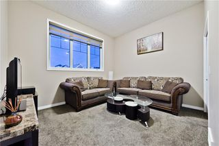 Photo 11: 142 SKYVIEW POINT CR NE in Calgary: Skyview Ranch House for sale : MLS®# C4226415