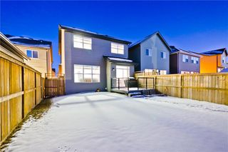 Photo 29: 142 SKYVIEW POINT CR NE in Calgary: Skyview Ranch House for sale : MLS®# C4226415