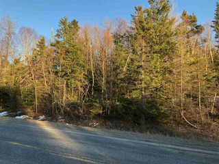 Main Photo: Lot 6 Brickyard Road in Mira Gut: 211-Albert Bridge / Mira Vacant Land for sale (Cape Breton)  : MLS®# 202006919