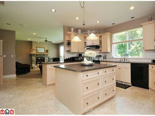 """Photo 3: 2650 204 Street in Langley: Brookswood Langley House for sale in """"South Langley/Fernridge"""" : MLS®# F1209267"""