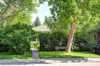 Photo 9: 242 24 Avenue NE in CALGARY: Tuxedo Residential Detached Single Family for sale (Calgary)  : MLS®# C3624676