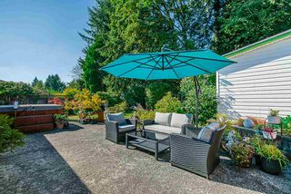 Photo 17: 21545 CAMPBELL Avenue in Maple Ridge: West Central House for sale : MLS®# R2398548