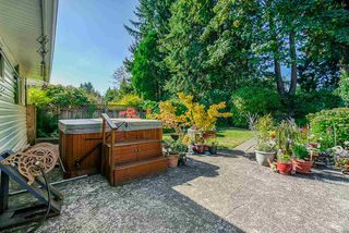 Photo 19: 21545 CAMPBELL Avenue in Maple Ridge: West Central House for sale : MLS®# R2398548