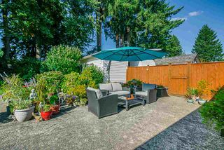 Photo 18: 21545 CAMPBELL Avenue in Maple Ridge: West Central House for sale : MLS®# R2398548
