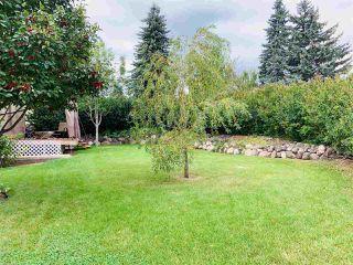 Photo 29: 10208 31 Street in Edmonton: Zone 23 House for sale : MLS®# E4172838
