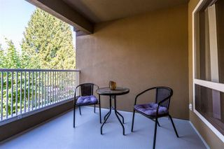 Photo 14: 5 2120 CENTRAL Avenue in Port Coquitlam: Central Pt Coquitlam Condo for sale : MLS®# R2414519