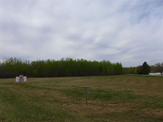 Photo 1: 50 Ave RR 281: Rural Wetaskiwin County Rural Land/Vacant Lot for sale : MLS®# E4191216