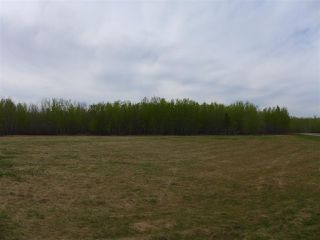 Photo 5: 50 Ave RR 281: Rural Wetaskiwin County Rural Land/Vacant Lot for sale : MLS®# E4191216